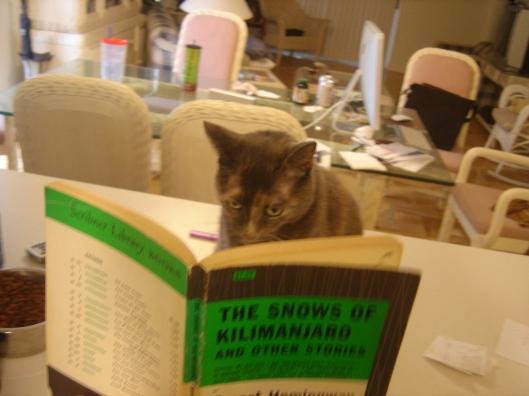 Zoë Reads Hemingway