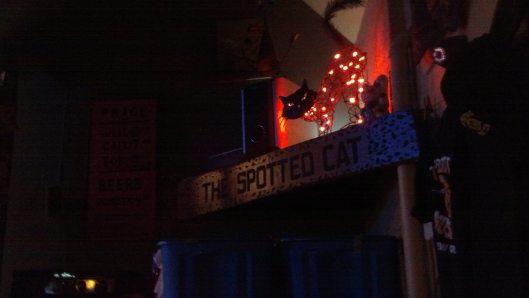 spottedcat7
