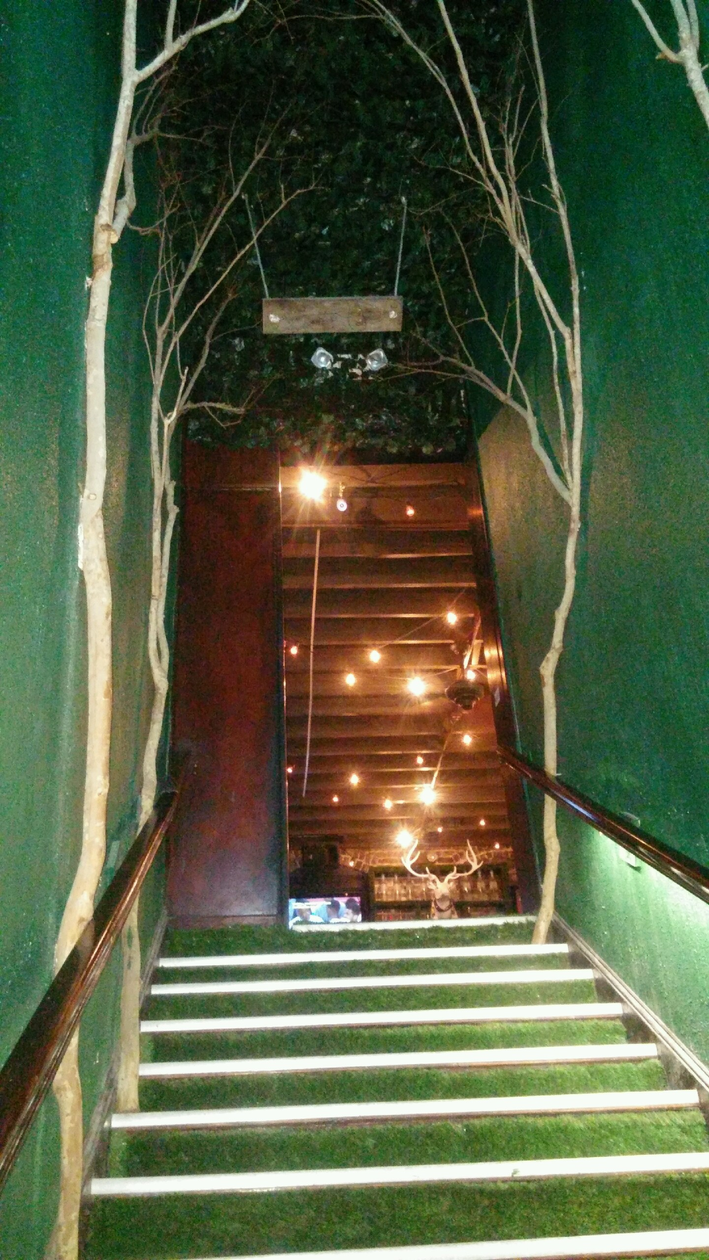 Treehouse Stairs