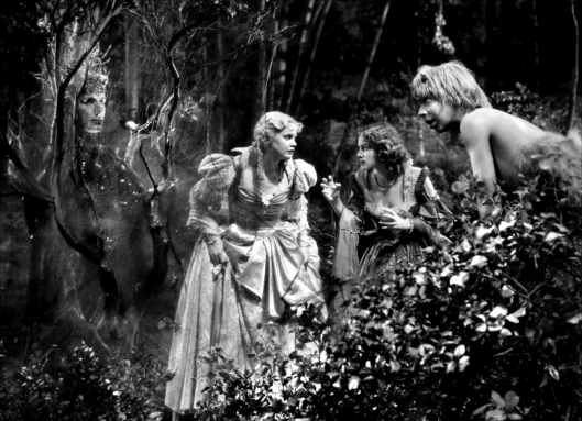 A Midsummer Nights Dream 7