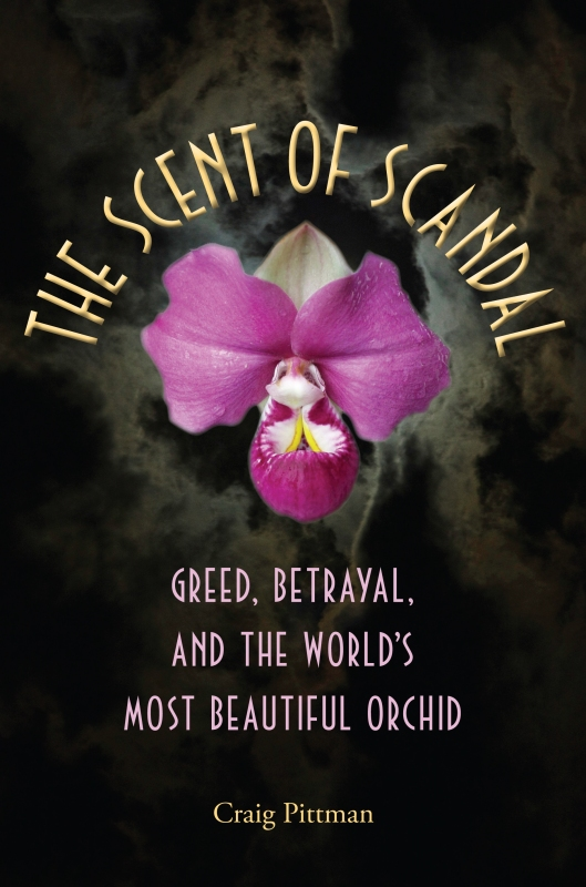the-scent-of-scandal