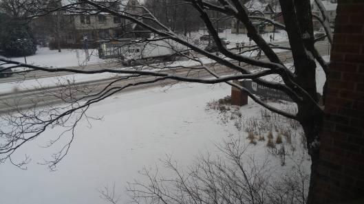 hamline-snow