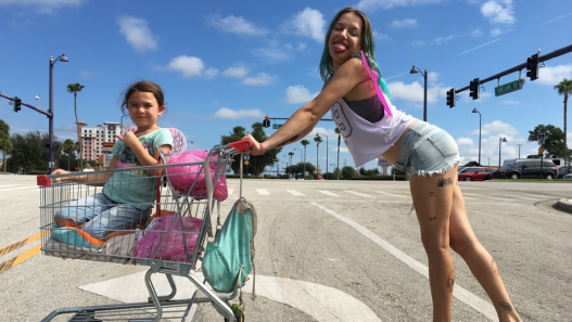L35 The Florida Project