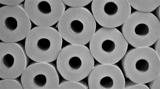 toilet-paper-4958068_1920